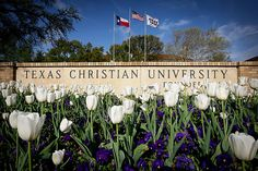 TCU.....I want to take my troop to see the campus....on my list of many.