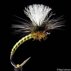 """229 Likes, 8 Comments - Holger Lachmann (@holgerlachmann) on Instagram: """"Trout Snack www.theonefly.com #theonefly #flytying #flyfishing #flies #nymphs #fliegenbinden…"""""""