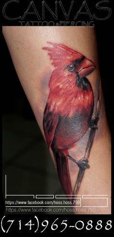 Cardinal Tattoo Cardinal Tattoos, Tattoos Gallery, Animal Tattoos, Watercolor Tattoo, Tatting, Body Art, Ink, Writings, Tatoos