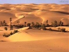 Desert Oasis, Libya,
