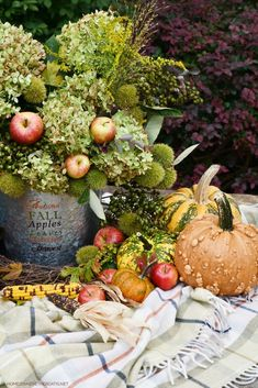 Autumn Harvest Arrangement | ©homeiswheretheboatis.net #fall #hydrangeas #apples #pumpkins #centerpiece Flower Centerpieces, Flower Arrangements, Autumn Blaze Maple, Low Maintenance Shrubs, Limelight Hydrangea, Welcome Fall, Seed Pods, Tiny Flowers, Fall Harvest