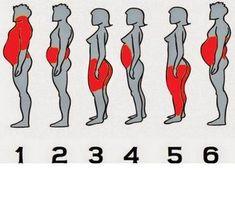 Tudod, melyik testrészedre miért hízol, és hogyan fogyhatsz le? Íme a válasz! - Blikk Rúzs Kili, Medical, Health, Projects, Log Projects, Blue Prints, Health Care, Medicine, Med School