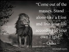 Come out of the masses. Stand alone like a Lion - Google Search