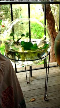 A large glass bowl and a plant stand gets you this great little water garden for your patio/porch