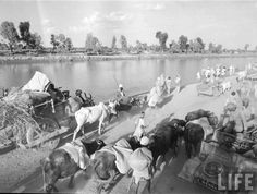 Partition of India | of india 1947 rare photos of partition of india 1947