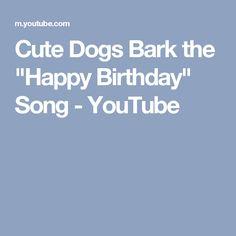 "Cute Dogs Bark the ""Happy Birthday"" Song - YouTube"
