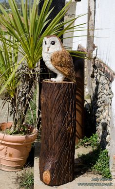 Where could you put an owl? I bet there is a corner in your garden that could use a little brightening up? #chainsawcarving #sculpture #wildlifeart #artist #garden #gardendesign #woodworking #carving #wood #art #owl #barnowl