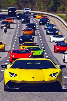 Lamborghini Aventadors. There's got to be about $20,000,000 in this picture!