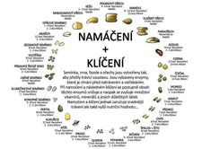 Namáčení a klíčení Syrová strava Clean Recipes, Raw Food Recipes, Vegan Food, Healthy Food, Healthy Eating, Natural Health, Feel Good, Helpful Hints, Journal