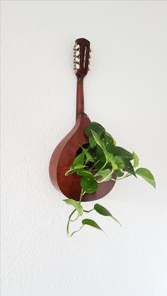 Pflanzenaufhängung mit Mandoline, instrument plant hanger