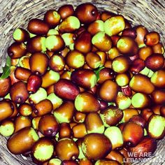 Who's craving #Jujube? مين عبالو عناب؟  can't wait for Nov for these