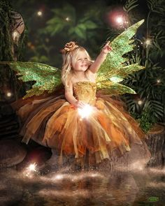 Photo of Enchanted Fairies - Plano, TX, United States Princess Shot, Fairy Photoshoot, Fairy Photography, Fairies Photos, Unicorns And Mermaids, Fairy Pictures, Baby Fairy, Fairy Princesses, Beautiful Fairies