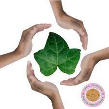 AKA ivy leaf