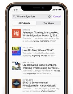 Search by topic - iOS 13 Tips and Tricks for iPhone - Apple Support Abc News Live, Armchair Bed, Apple Support, Back To School Crafts, Best Brains, Diy Chicken Coop, Apple Inc, Phonics, Depression