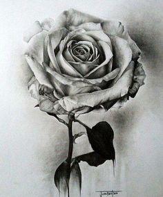 Rose Black & white art