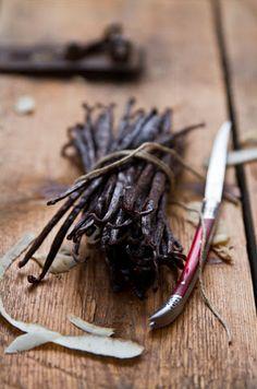 Mexican vanilla bean...the base note of Aesthetic Content's Pelle Vanilla Luxury…