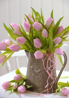 Torbjorn Skogedal - tulip_flower - My site Black Tulips, Pink Tulips, Tulips Flowers, My Flower, Spring Flowers, Flower Art, Planting Flowers, Beautiful Flowers, Tulpen Arrangements
