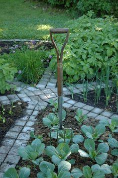 love this garden..