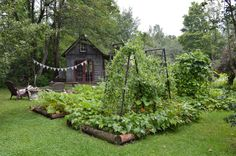 Beautiful Vegetable Gardens | Content in a Cottage