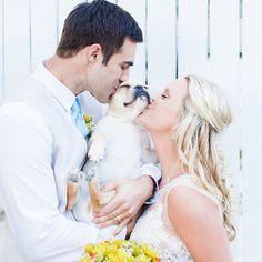 Engagement Pictures, Engagement Shoots, Wedding Pictures, Wedding Engagement, Cabin Wedding, City Hall Wedding, Wedding Poses, Wedding Signs, Wedding Ideas