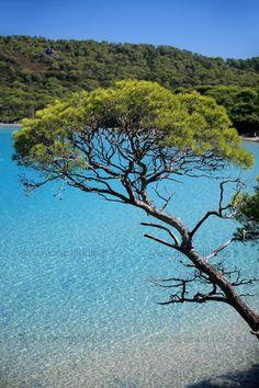 beauty of Porquerolles island, Var Aix En Provence, Archipelago, Places Around The World, Around The Worlds, Places To Travel, Places To Visit, Drawing Scenery, Photos Voyages, Worldwide Travel
