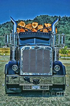 Peterbilt Logger. www.rharrisphotos.com