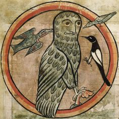 Detail of a miniature of an owl being mobbed by other birds. From a bestiary, England, 2nd quarter of the 13th century, Harley MS 4751, f. 47r.