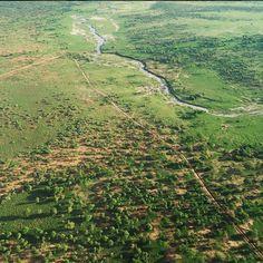 "April 11, 2015: ""Tarangire National Park, Tanzania."" Photo by Mark Visser"