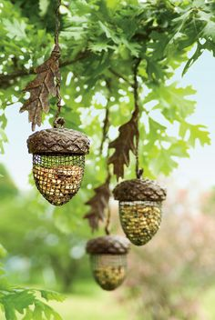 Acorn Birdfeeder | Buy from Gardener's Supply
