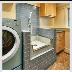 Bathing station for pets inside laundry room. Great idea!