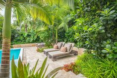 A lounging area was strategically placed near the tropical planting to help provide shade and privacy.