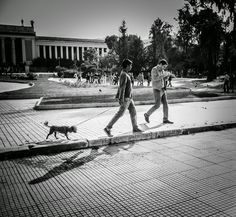 Simos Photography: Untitled