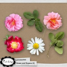 Green and flowers 22::09/05 - New Products::Memory Scraps {CU}