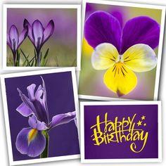 Happy Birthday Birthday Wishes For Women, Birthday Wishes And Images, Birthday Blessings, Birthday Pictures, Birthday Messages, Birthday Club, Happy 2nd Birthday, Happy Birthday Greetings, Happy B Day
