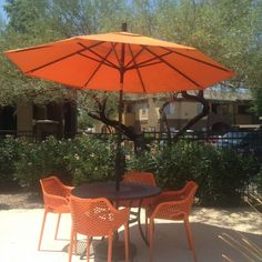 the stone canyon apartments in mesa az chose our madrid wrought iron