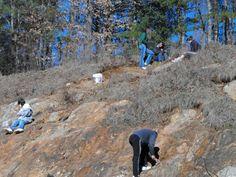 NC, Wake Forest - Garnet Hill Rock hunting