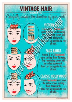 Vintage hairstyling diagram poster. $30.00, via Etsy.