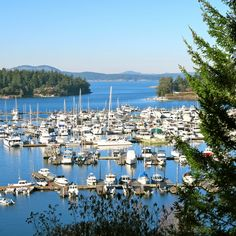 The prettiest islands to visit outside Seattle, Washington