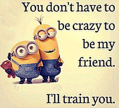 Minion - You don't have to be crazy to be my friend. I'll train you.