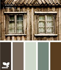 winter cabin #Color Palettes