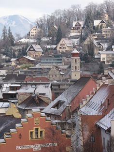 I walked all through this village. You would never know that a factory (Erne) exists in one of these 120year old homes! A beautiful place. Feldkirch, Vorarlberg, Austria