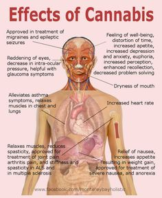 Effects of cannabis