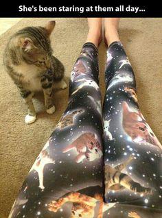 Ur pants r fweakin me ouwt lwadie! Lol!