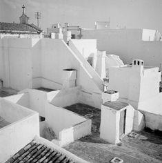 Artur Pastor, um dos maiores fotógrafos portugueses do século XX, deixou um…