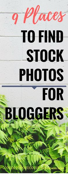 9 Places to find stock photos for bloggers | blogging for beginners | stock photography for bloggers | how to start a blog | blogging tips and tricks | blogging tools and resources