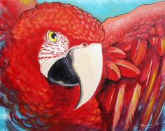 "Artist: Rodolfo Vanni; Acrylic, 2011, Painting ""Red Macaw"" #Art #Macaw #Birds #Parrot #Painting"