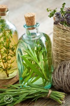 What are herbal oils or herb infused oils? The much older, more eco-wise, and more budget friendly cousin to essential oils. What are herbal oils or herb infused oils, how to make them and how to use them in your every day life. #herbalinfusedoil #howtomake #herbs #herbaloil #naturalremedies #health #DIY #infusion #skincare #benefits Thyme Benefits, Homemade Body Care, Vinegar Salad Dressing, Herbs For Health, Herbal Oil, Infused Oils, Best Oils, Natural Health Remedies, Healthy Beauty