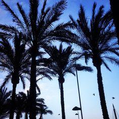 Almería στην πόλη Almería, Andalucía