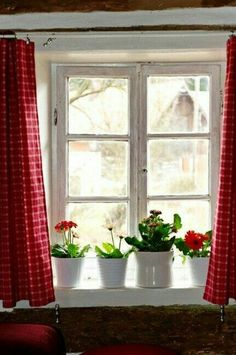Window with red and white checked curtains and plants on the windowsill