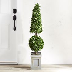 Wilson fisher 35 led lighted topiary tree at big lots for the outdoor faux boxwood cone ball 48 topiary green workwithnaturefo